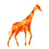 orange shapes abstract giraffe. Animal isolated Royalty Free Stock Photography
