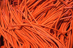 Orange shoe laces or cords. Royalty Free Stock Image
