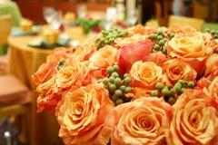 Orange siamesische Rosen 015 Lizenzfreie Stockfotografie