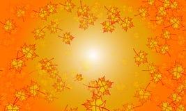 Orange signalbakgrund för lönnlöv royaltyfria foton
