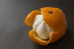 Hypocrisy, hiding the truth. In the orange skin from under the sweet mandarin hides a garlic bulb. Unpleasant surprise, a dirty trick, deceived expectations royalty free stock photography