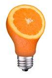 orange skiva för lightbulb royaltyfria foton