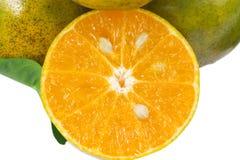 orange skivor Royaltyfri Fotografi