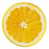 Orange Slice. A perfectly round orange slice isolated on a white background Stock Images