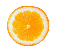 Orange Slice Stock Image