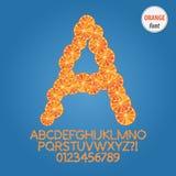 Orange Slice Alphabet and Digit Vector Royalty Free Stock Photography