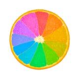 Orange slice as color wheel. Colorful segments of an orange slice Royalty Free Stock Image