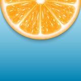 Orange slice Royalty Free Stock Photo