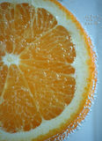 Orange slice in bubbly water Royalty Free Stock Photos