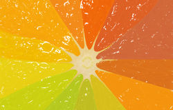 Orange slice in different colors, background Royalty Free Stock Photography