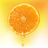 Orange slice with drops of juice. Stock Images
