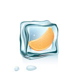 Orange slice and ice cube  Stock Photography