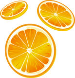 Orange slice illustration - isolated on white Stock Photo