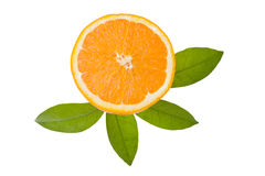 Orange slice and orange leaf isolated on white background Royalty Free Stock Photo