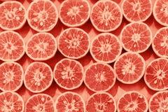 Orange slice pattern colorized pop art. Background royalty free stock images