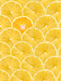 Orange Slice Stand Out Of Yellow Lemon Slices Royalty Free Stock Image