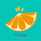 Orange Slice. Vector EPS of Orange Slice Stock Image