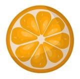 Orange slice vector Royalty Free Stock Image