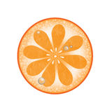 Orange Slice with water drops Royalty Free Stock Images