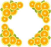 Orange sliced and leaves border Stock Image