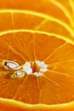 Orange slices. Taken in the macro. Suitable for textures, backgrounds Royalty Free Stock Photo