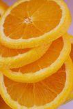 Orange slices. A close up view of citrus fruit slices Royalty Free Stock Photo