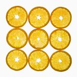Orange slices. Royalty Free Stock Photo