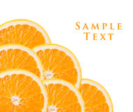 Orange slices as background Royalty Free Stock Image