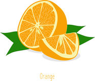 Orange slices, collection of  illustrations Stock Photography