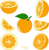 Orange slices, collection of  illustrations Royalty Free Stock Photography