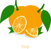 Orange slices, collection of  illustrations Stock Photo