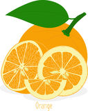 Orange slices, collection of  illustrations Stock Images