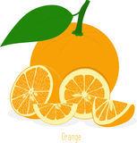 Orange slices, collection of  illustrations Royalty Free Stock Image