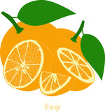 Orange slices, collection of  illustrations Royalty Free Stock Images