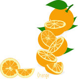 Orange slices, collection of  illustrations Royalty Free Stock Photo