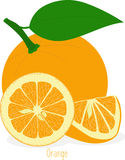 Orange slices, collection of  illustrations Stock Photos