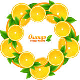 Orange slices with leaves  round frame Stock Image