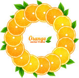 Orange slices with leaves vector round frame Royalty Free Stock Image