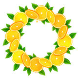Orange slices with leaves vector round frame Stock Image