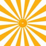 Orange slices on orange and white pattern color background Royalty Free Stock Photo