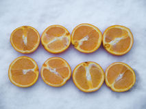 Orange Slices rowed up in the snow Stock Photography