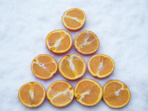 Orange Slices rowed up in the snow Royalty Free Stock Photography