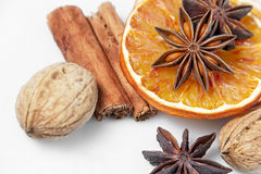 Orange slices and spices Stock Images