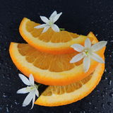 Orange slices with water drops and flowers on a black background Stock Photos