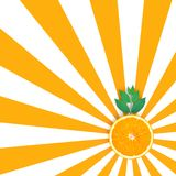 Orange slices on orange and white pattern color background Stock Photo