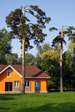 Orange small house. In a wood stock images