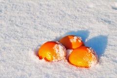 Orange snow. Juicy oranges lie in the snow Royalty Free Stock Image