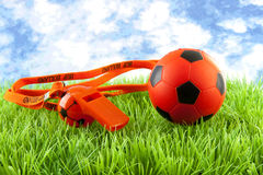 Orange soccer ball and flute on grass Stock Photography