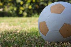 Orange soccer ball on the green lawn Stock Photos
