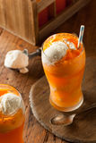Orange Soda Creamsicle Ice Cream Float Stock Image